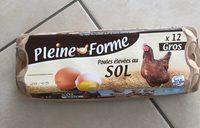 Poules élevées au sol - Product