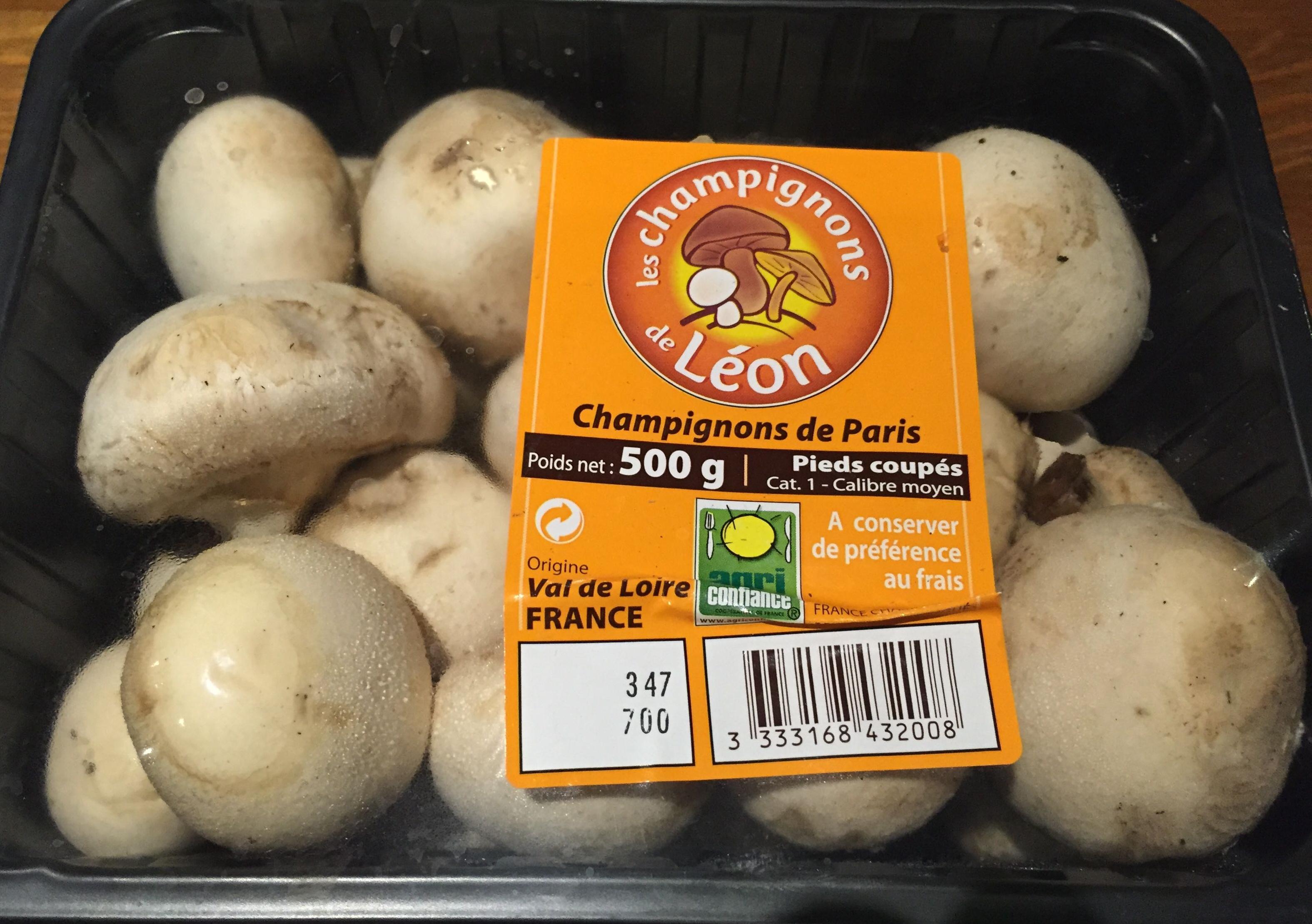 Champignons de paris les champignons de l on 500 g - Application pour reconnaitre les champignons ...