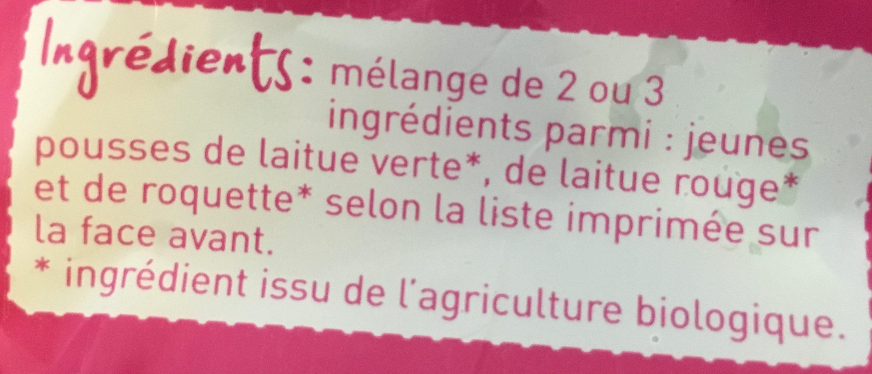 Jeunes Pousses - Ingrédients - fr
