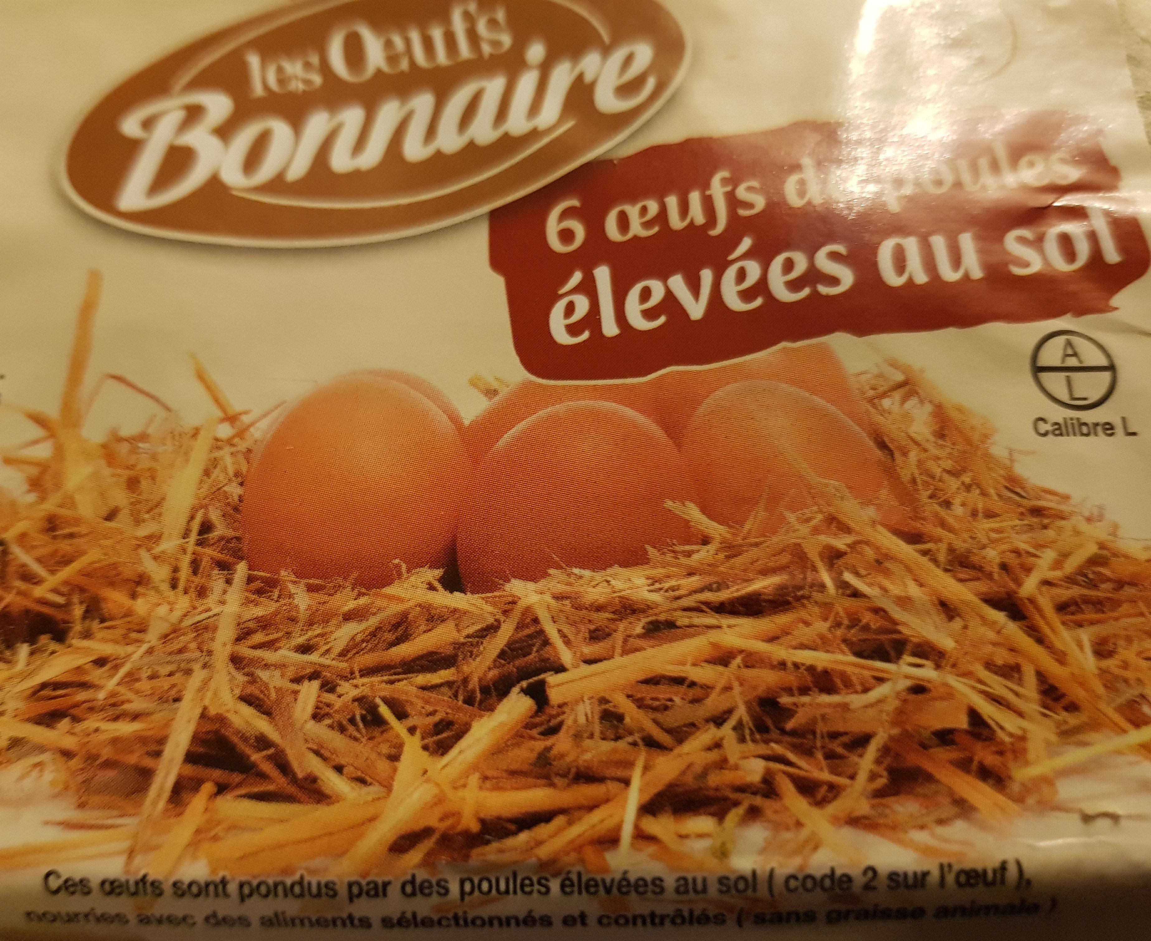 Les oeufs Bonnaire - Product