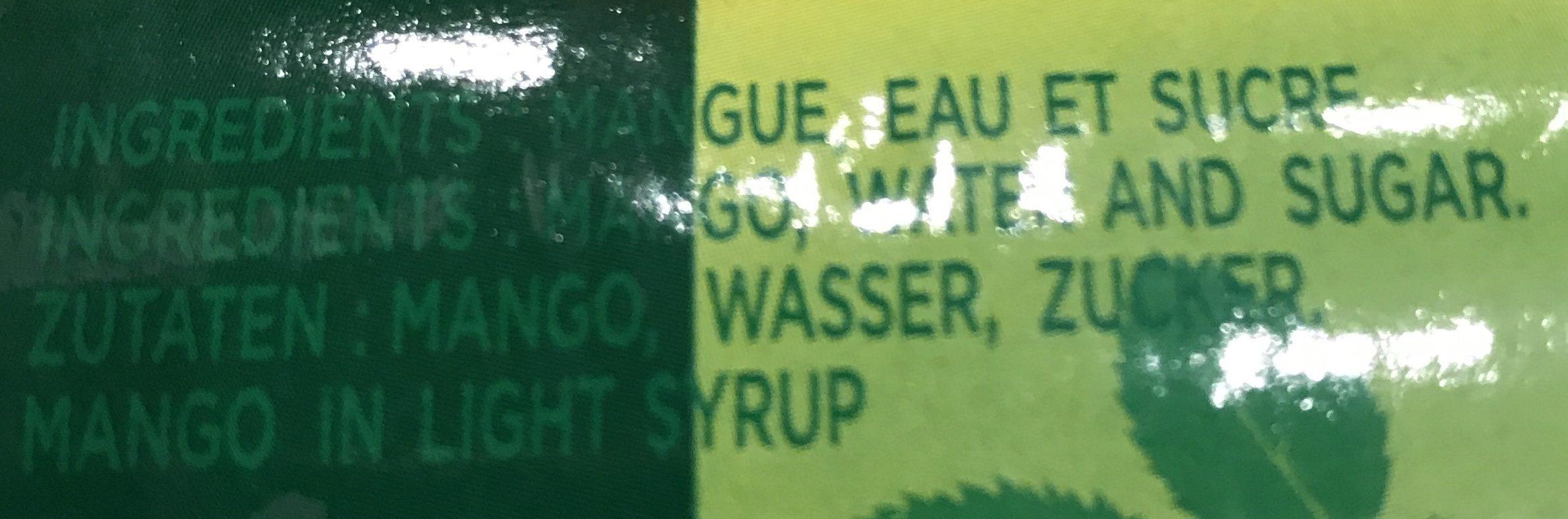 Mangue Au Sirop TWIN ELEPHANTS 425G - Ingredients - fr