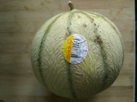 Melon - Product - en