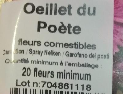 Oeillets du po te marius auda 20 fleurs - Oeillet du poete ...