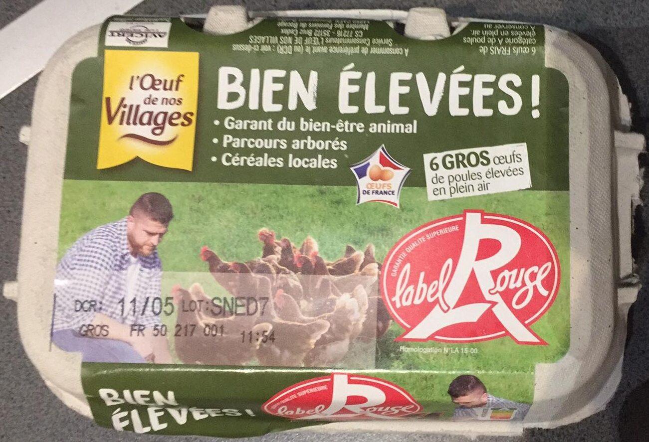 6 Gros œufs de poules élevées en plein air Bien élevées - Produit - fr