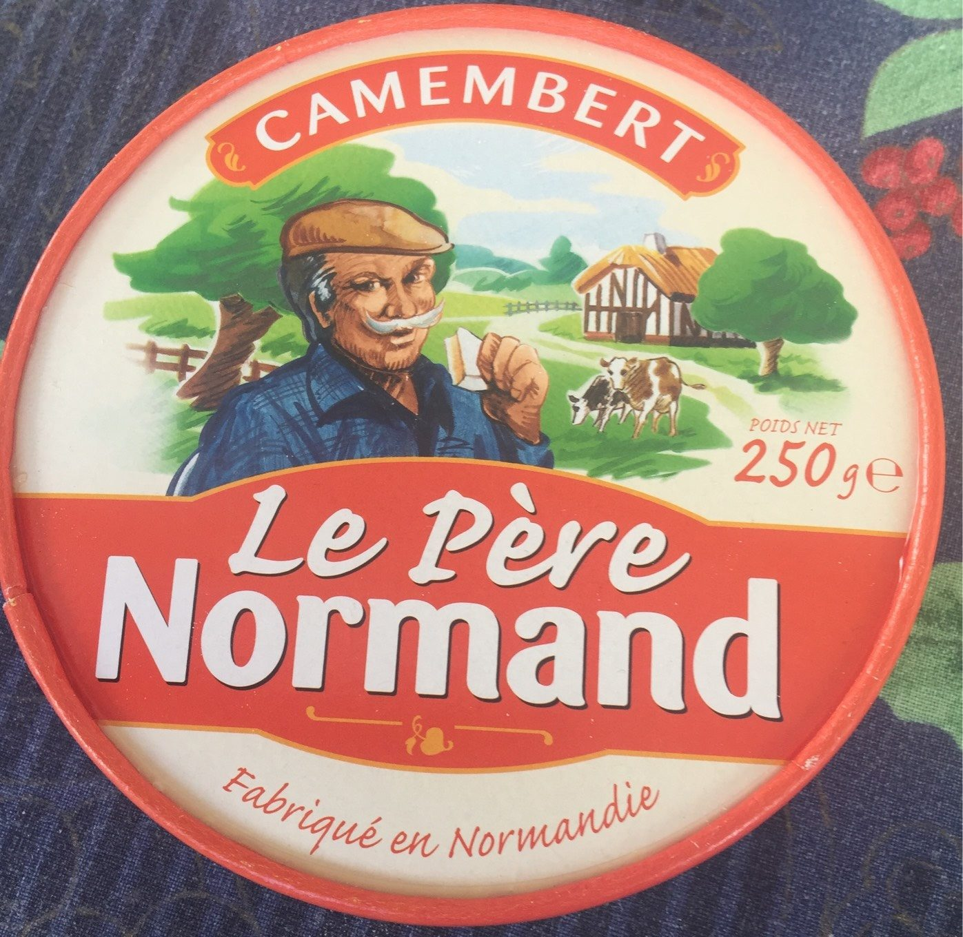 Camembert (21% MG) - Product