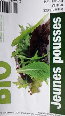 Salade jeunes pousses - Produit
