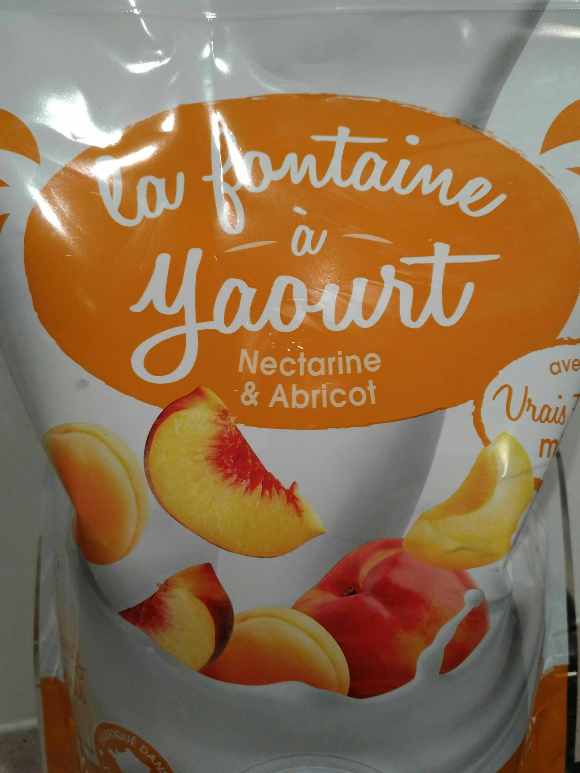 La fontaine à yaourt nectarine & abricot - Produit - fr