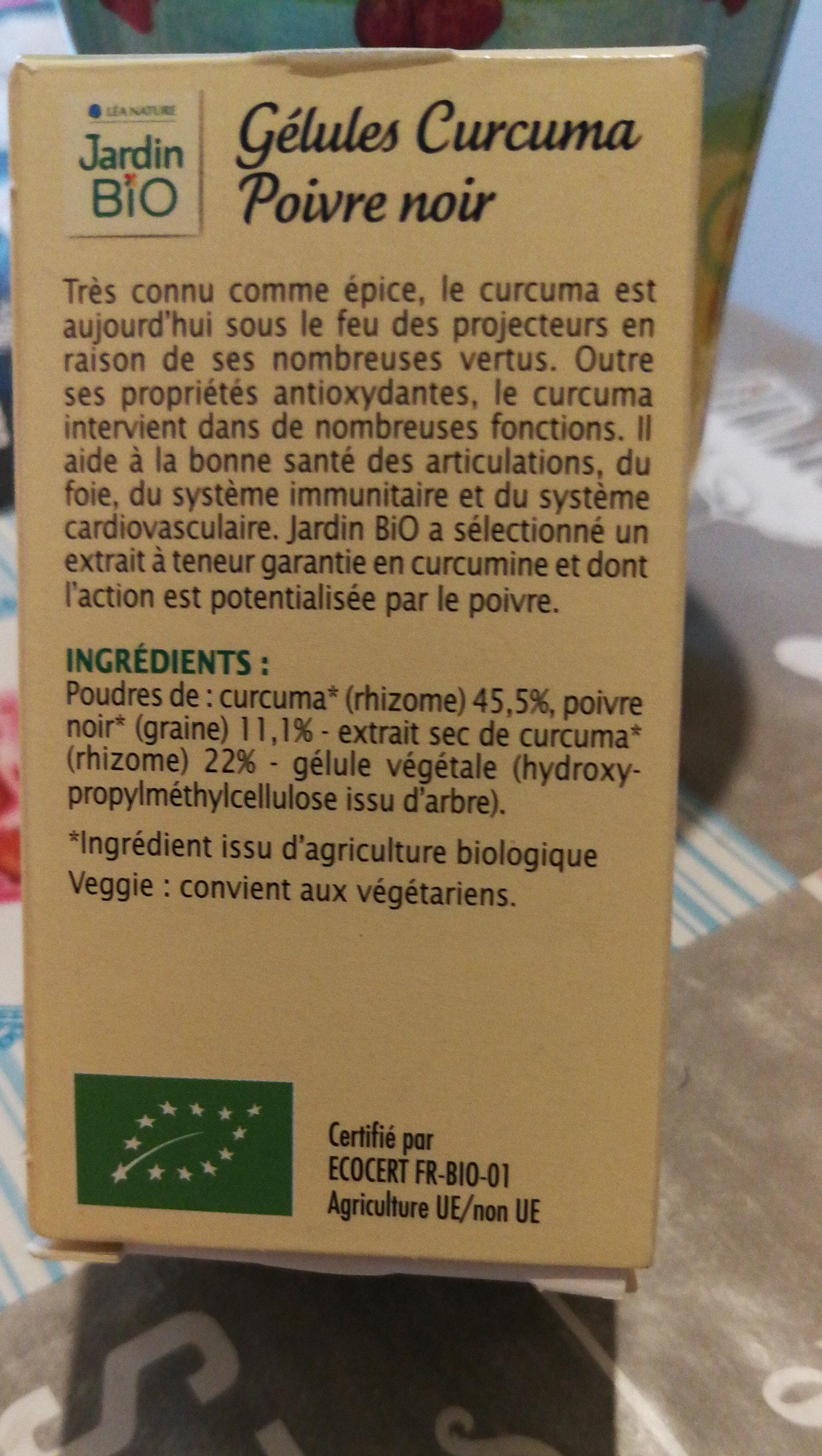 Gélules Végétales - Antioxydant Bio - Curcuma Poivre Noir - Produit