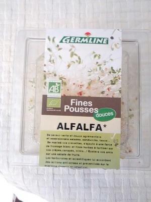 Alfalfa - Product - fr