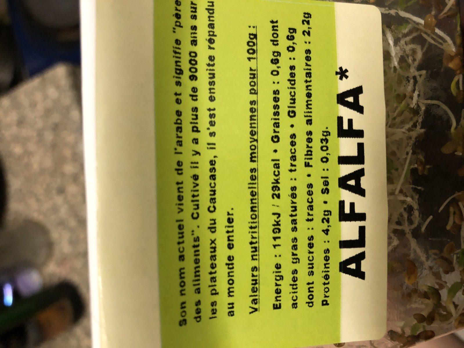 Alfalfa - Ingredients - fr