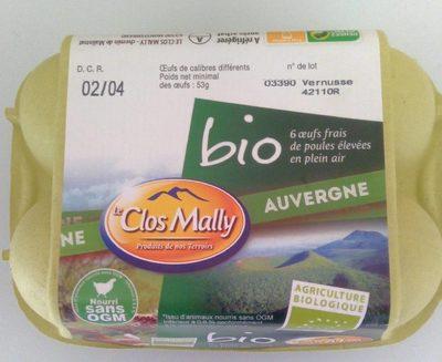Bio 6 Oeufs Frais De Poules élevées En Plein Air - Auvergne - Product