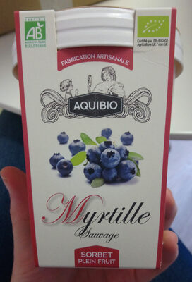 Sorbet myrtille plein fruit - Produit - fr