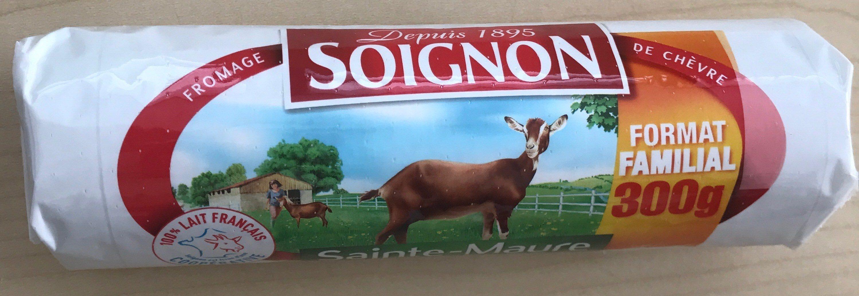 Bûche de chèvre Format familial - Producte - fr