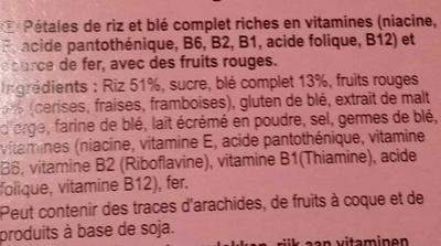 Stylesse Frutos Rojos - Ingredientes