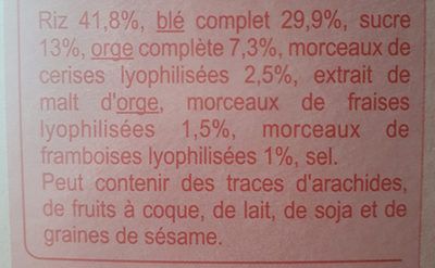 Stylesse Fruits Rouges - Ingredients
