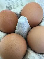 œufs de poules élevées en plein air - Ingrédients - fr