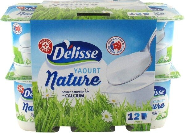 Yaourts natures - Produit - fr