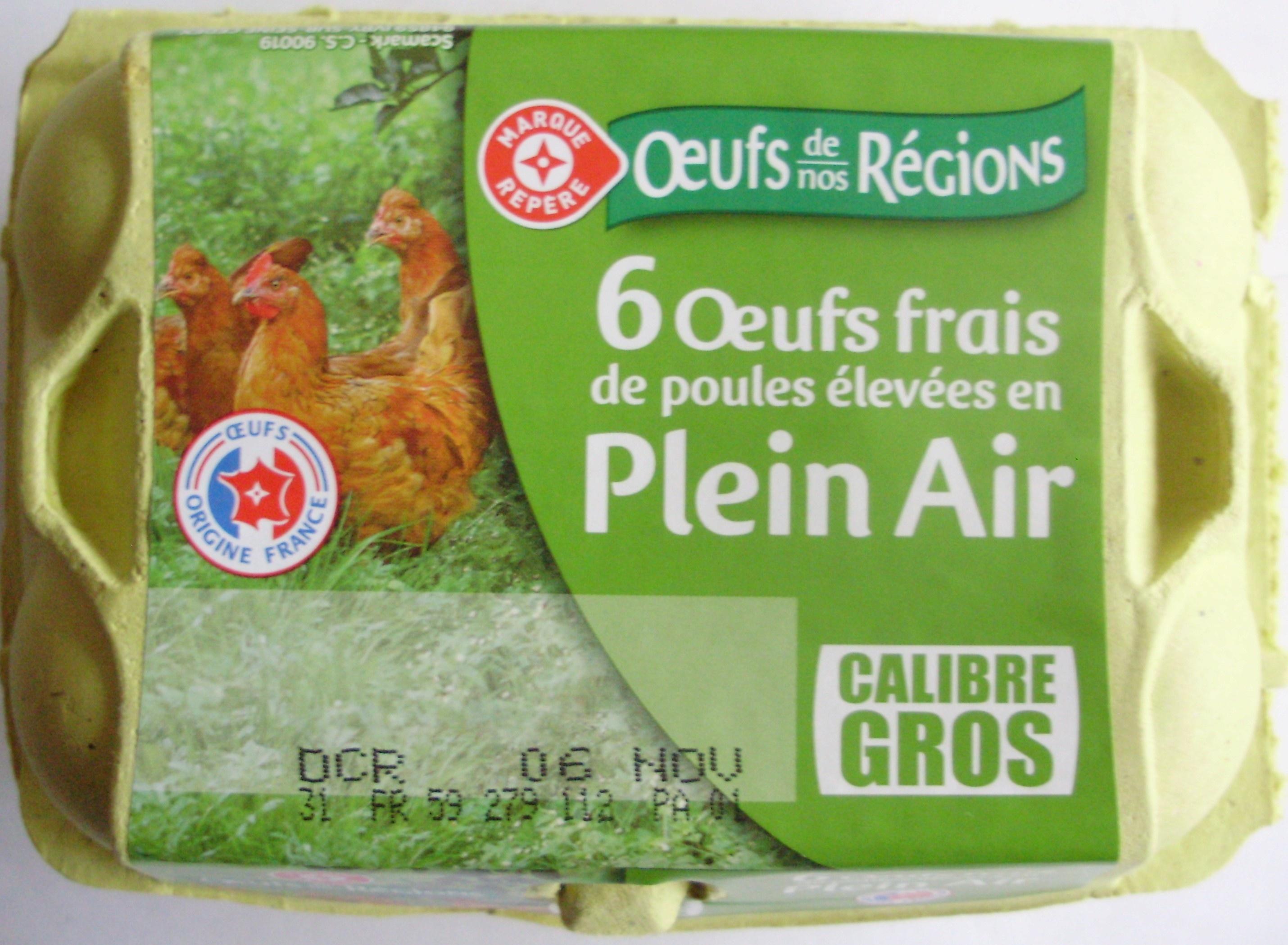 6 ufs frais de poules lev es en plein air calibre gros for Oeuf en plastique pour poule