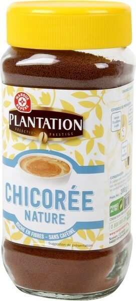 Chicorée nature - Product