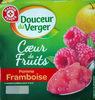 Coeur de fruits Pomme Framboise - Produit