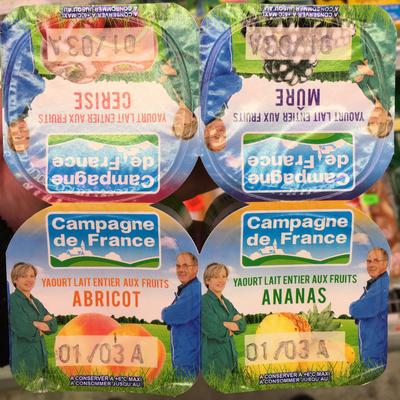 Yaourt lait entier aux fruits (abricot/cerise/mûre/ananas) - Produit - fr