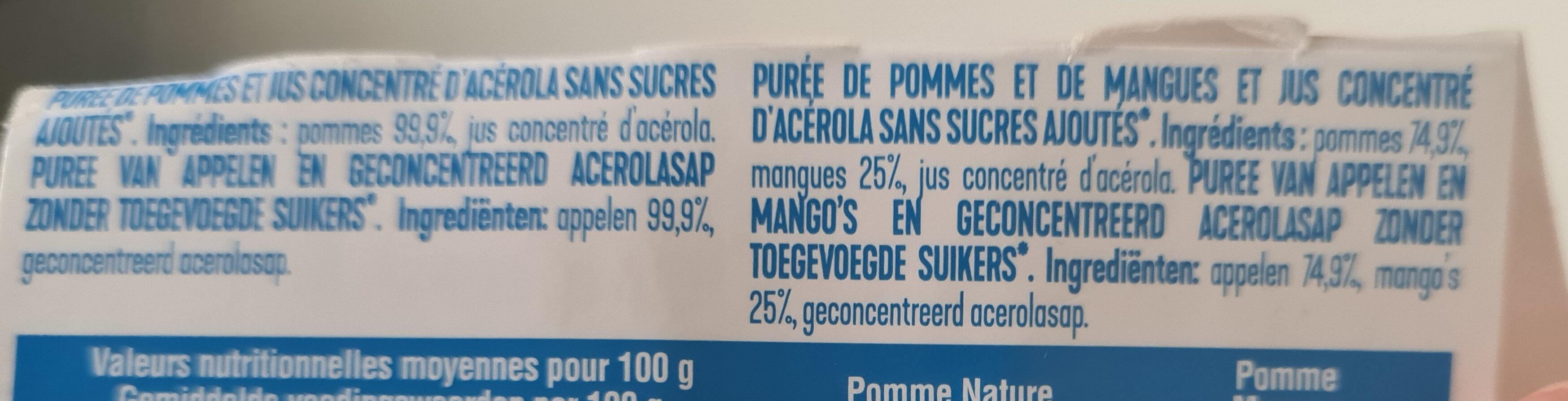 Pomme Mangue Sans Sucres Ajoutés - Ingredients - fr