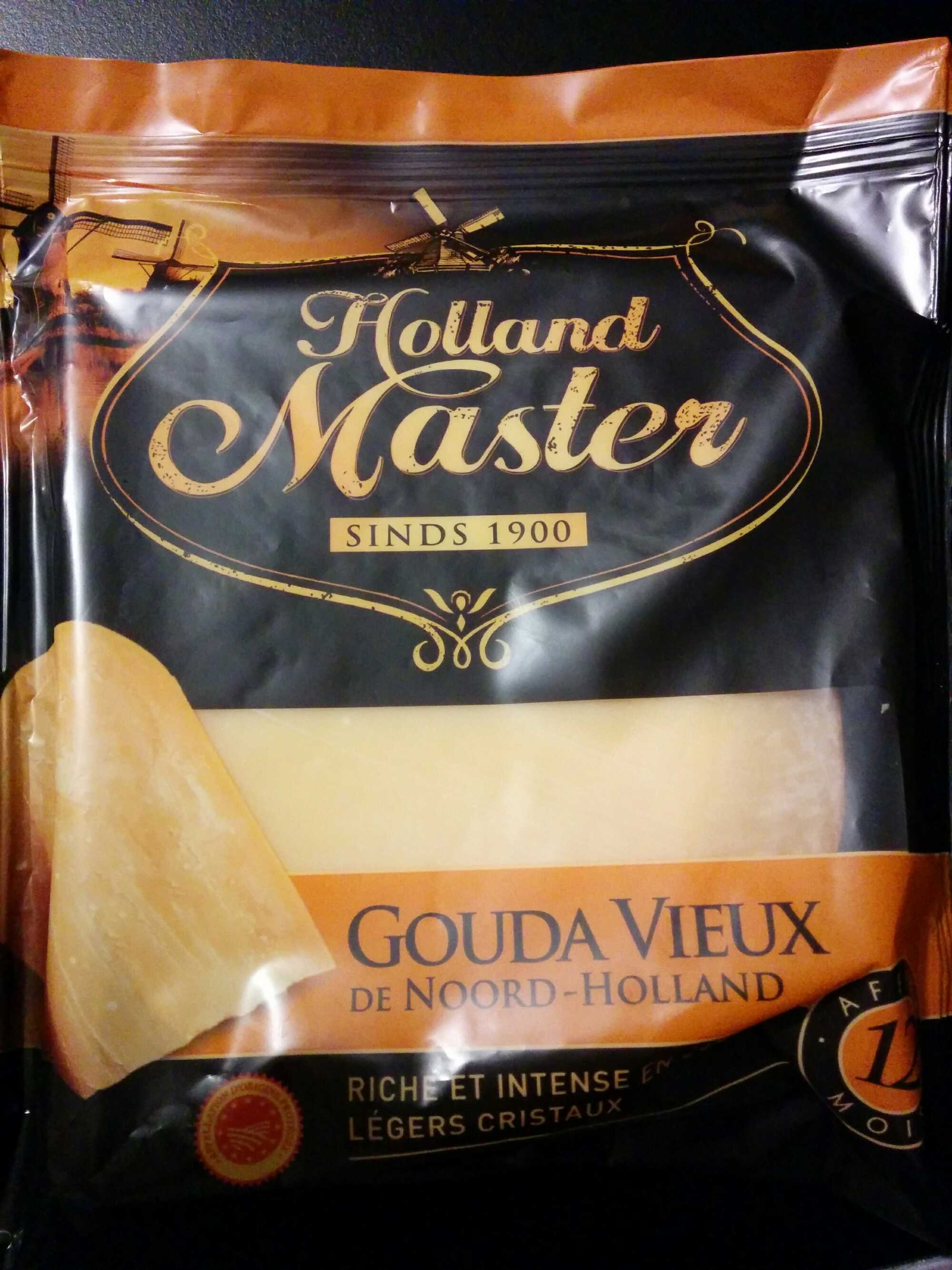 Master In Holland