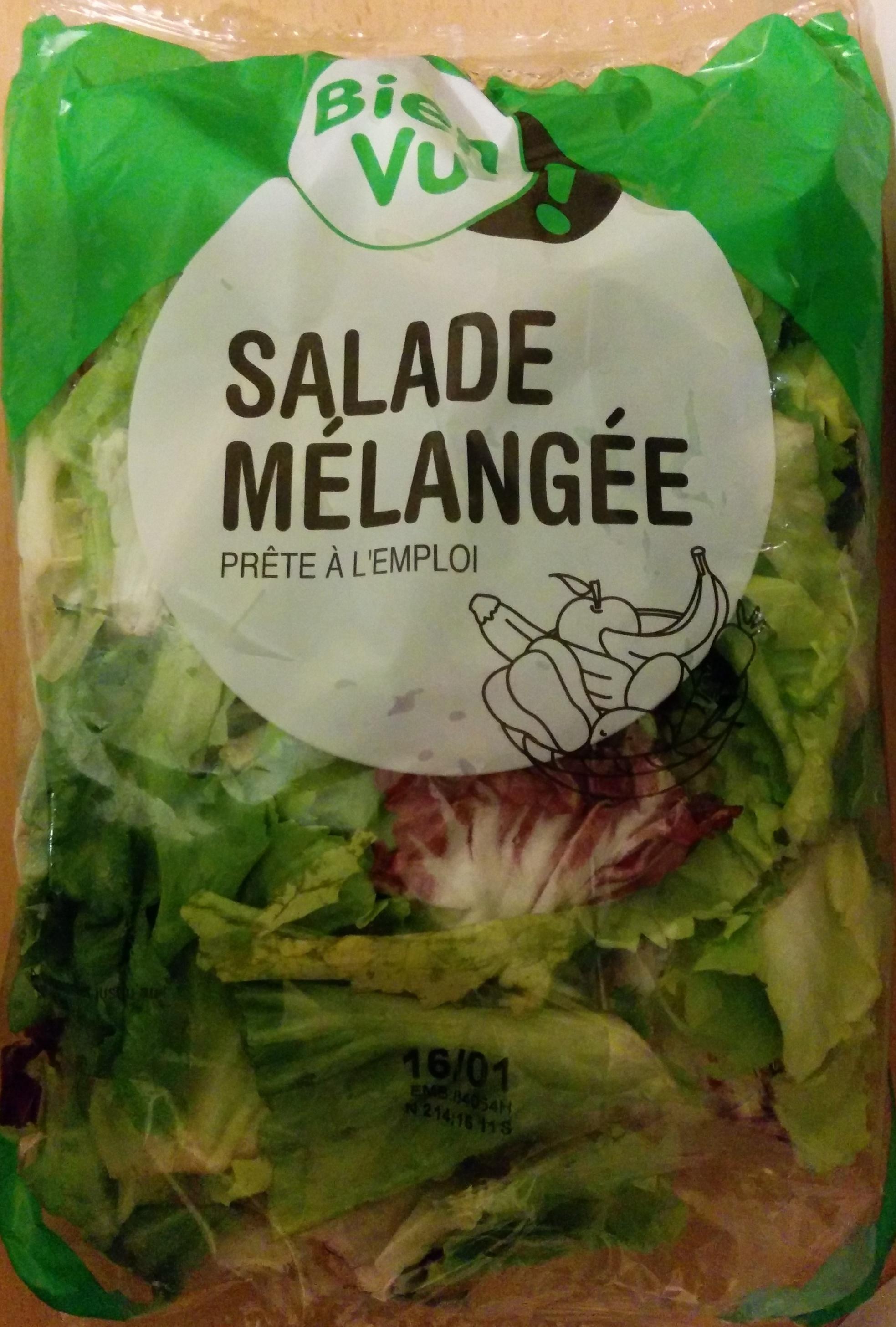 Salade Mélangée prête à l'emploi - Produit - fr
