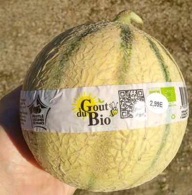 Melon Charentais - Product