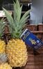 Ananas Victoria de La Réunion - Product