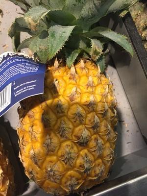 Ananas Victoria - Product