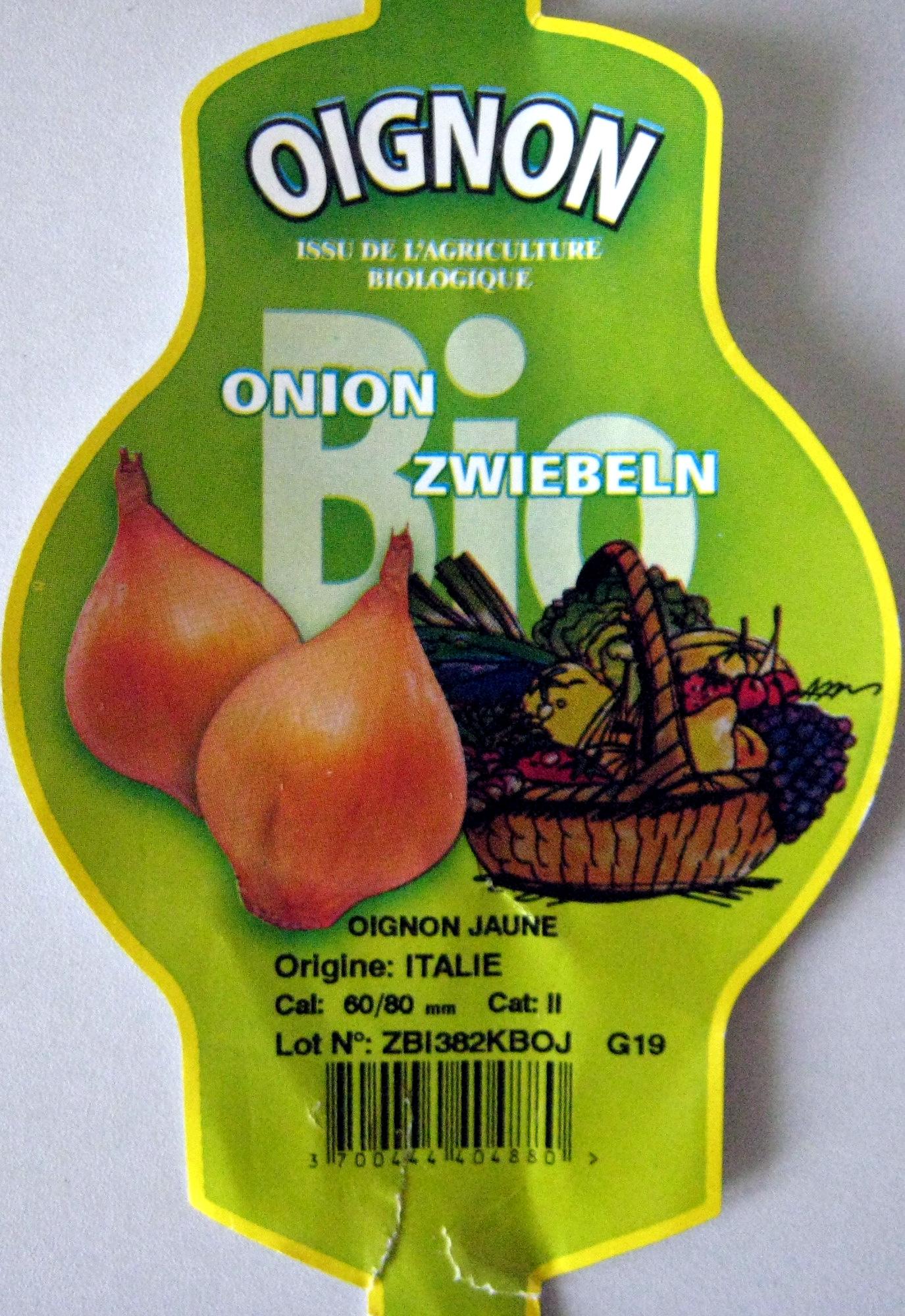 Oignon jaune bio Ferme de la Motte - Product