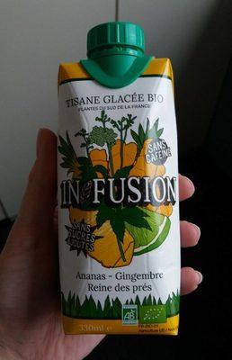 Tisane glacée bio ananas - gingembre - Produit