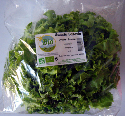 Salade Batavia Bio Pays Landais - Product - fr