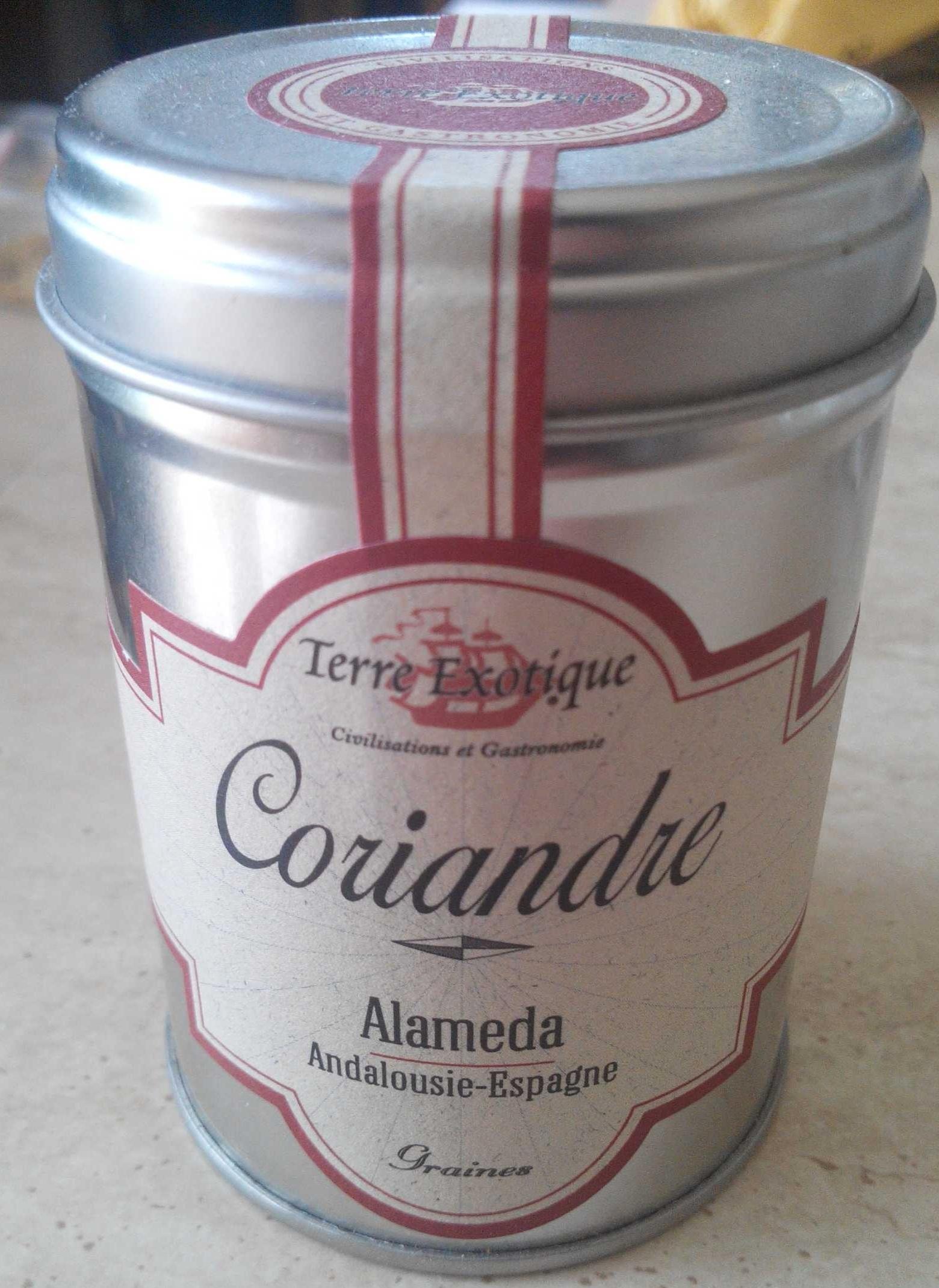 Coriandre Alameda - Produit