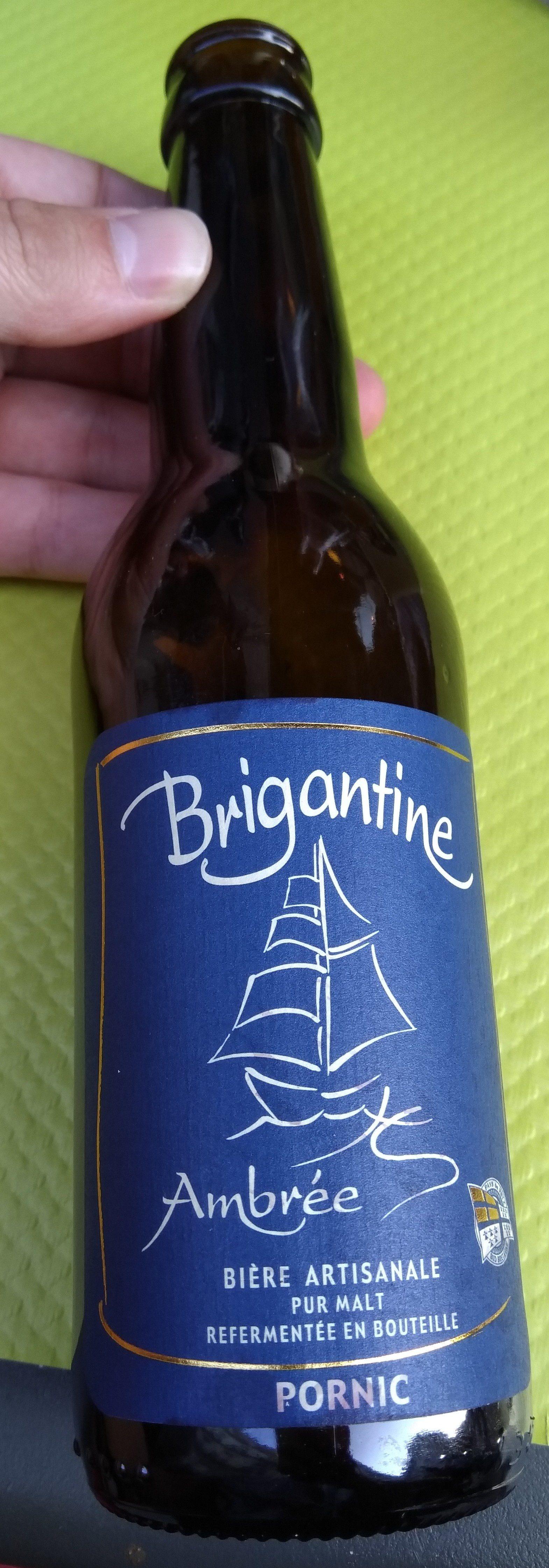 Brigantine Ambrée - Produit