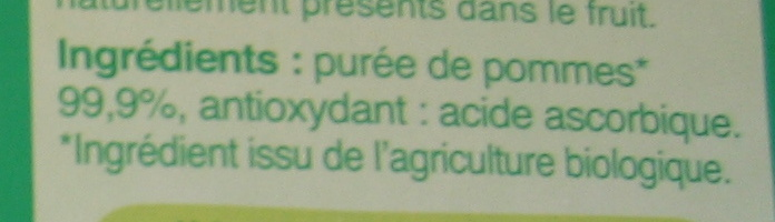 Purée pomme en gourdes - Ingredienti - fr