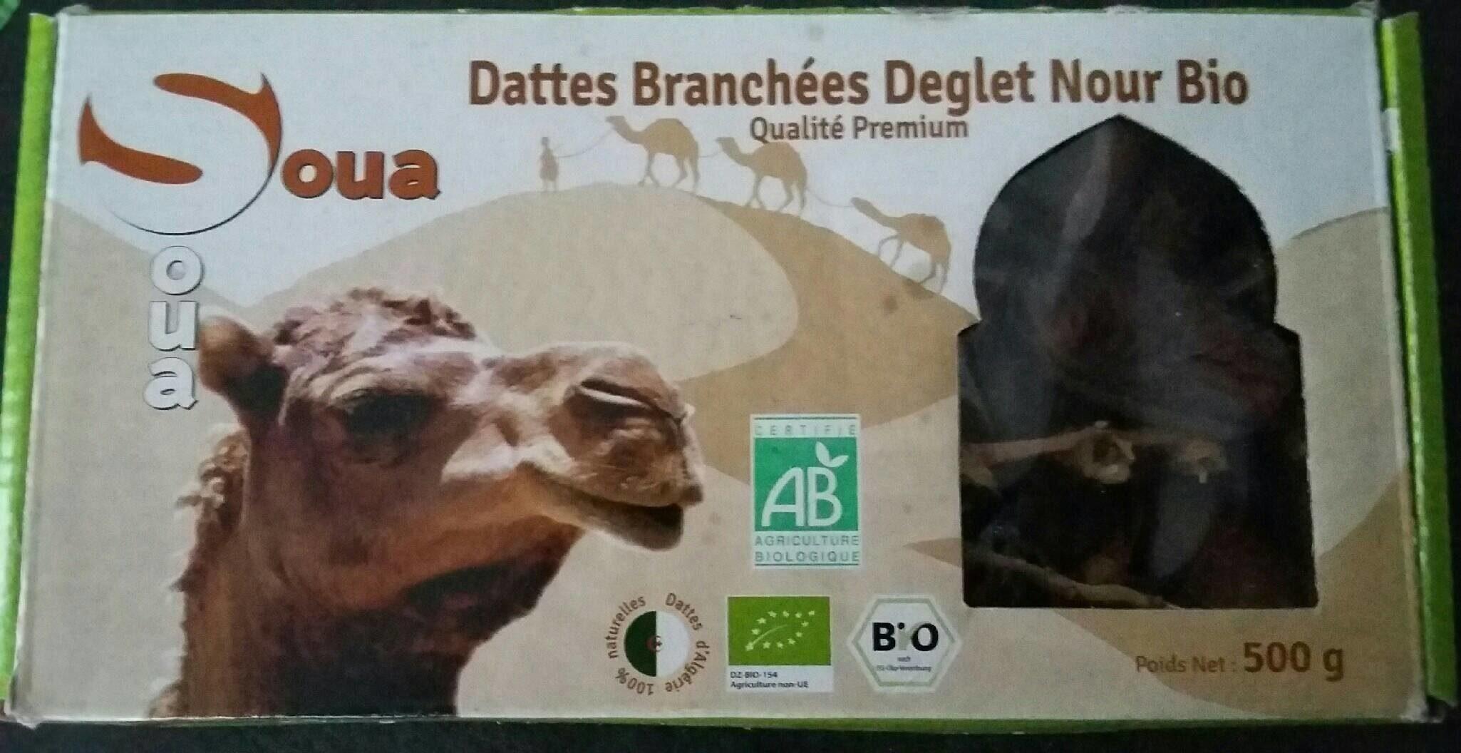 Dattes branchées Deglet Nour bio - نتاج - fr