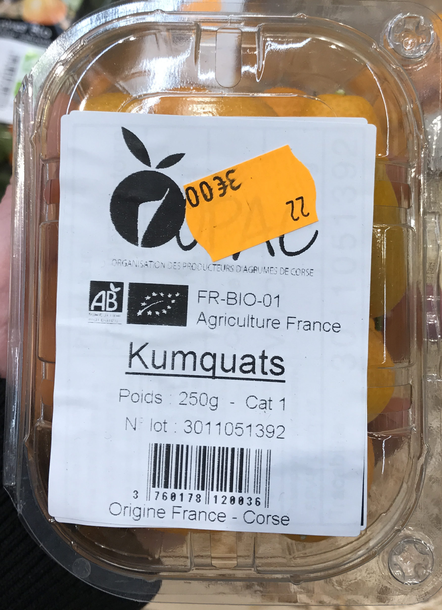 Kumquats - Product