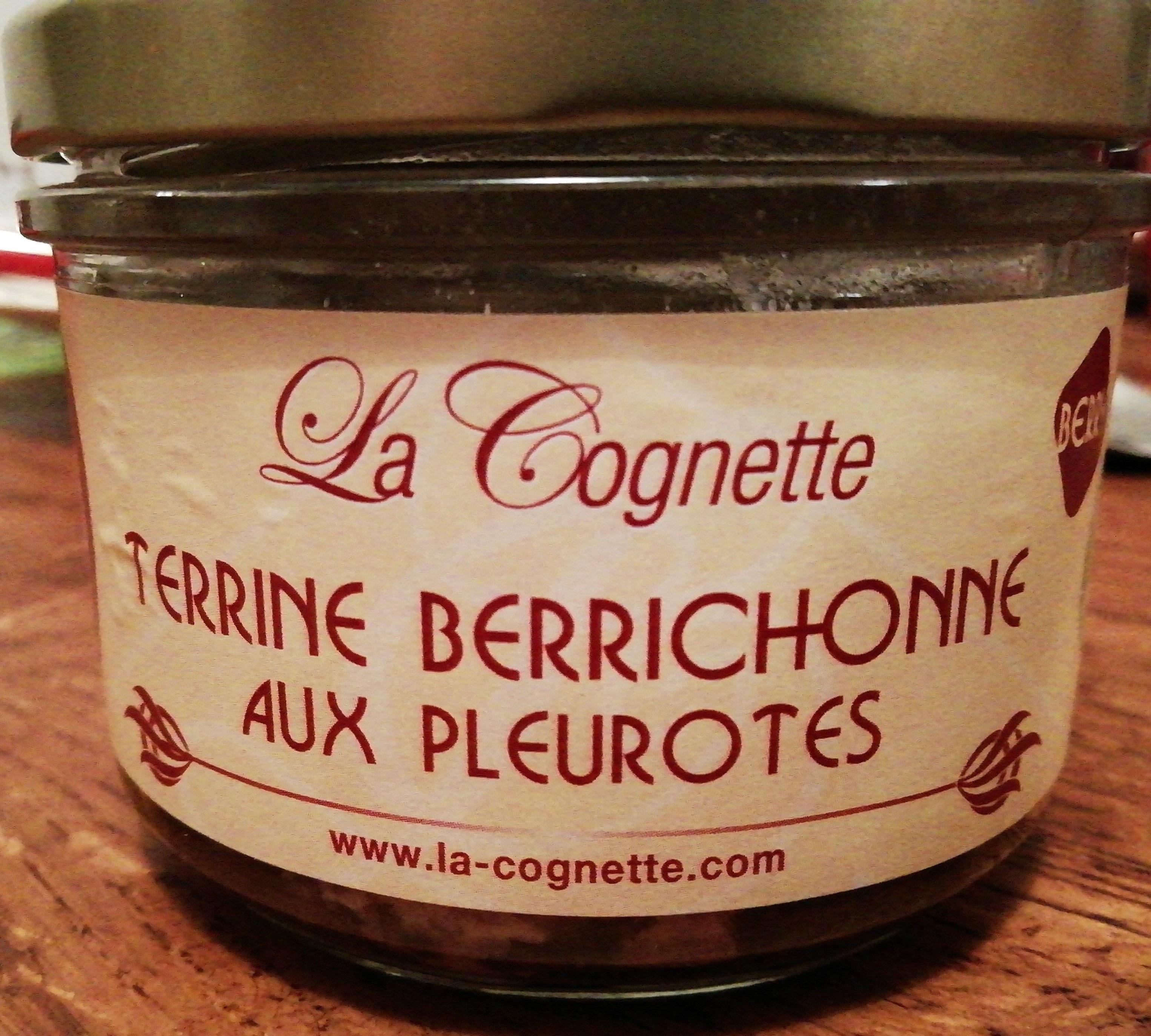 Terrine berrichonne aux pleurotes - Product