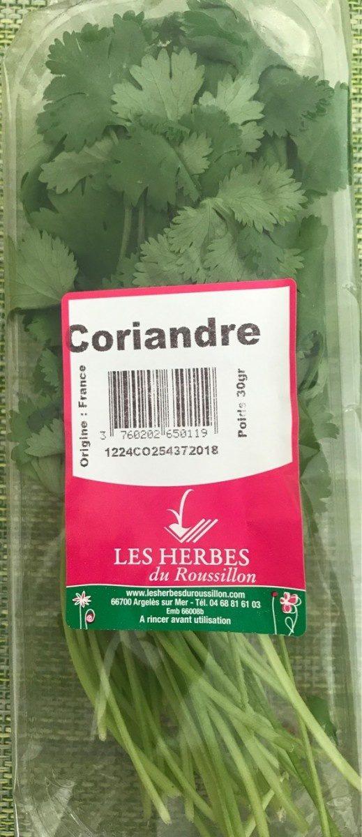 Coriandre fraiche - Produit - fr