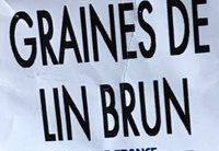 Graines De Lin Brun - Ingrédients