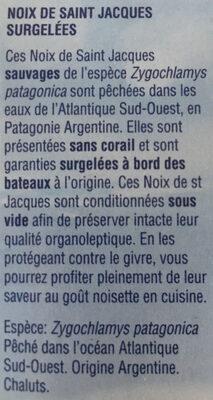 noix de Saint Jacques - 2