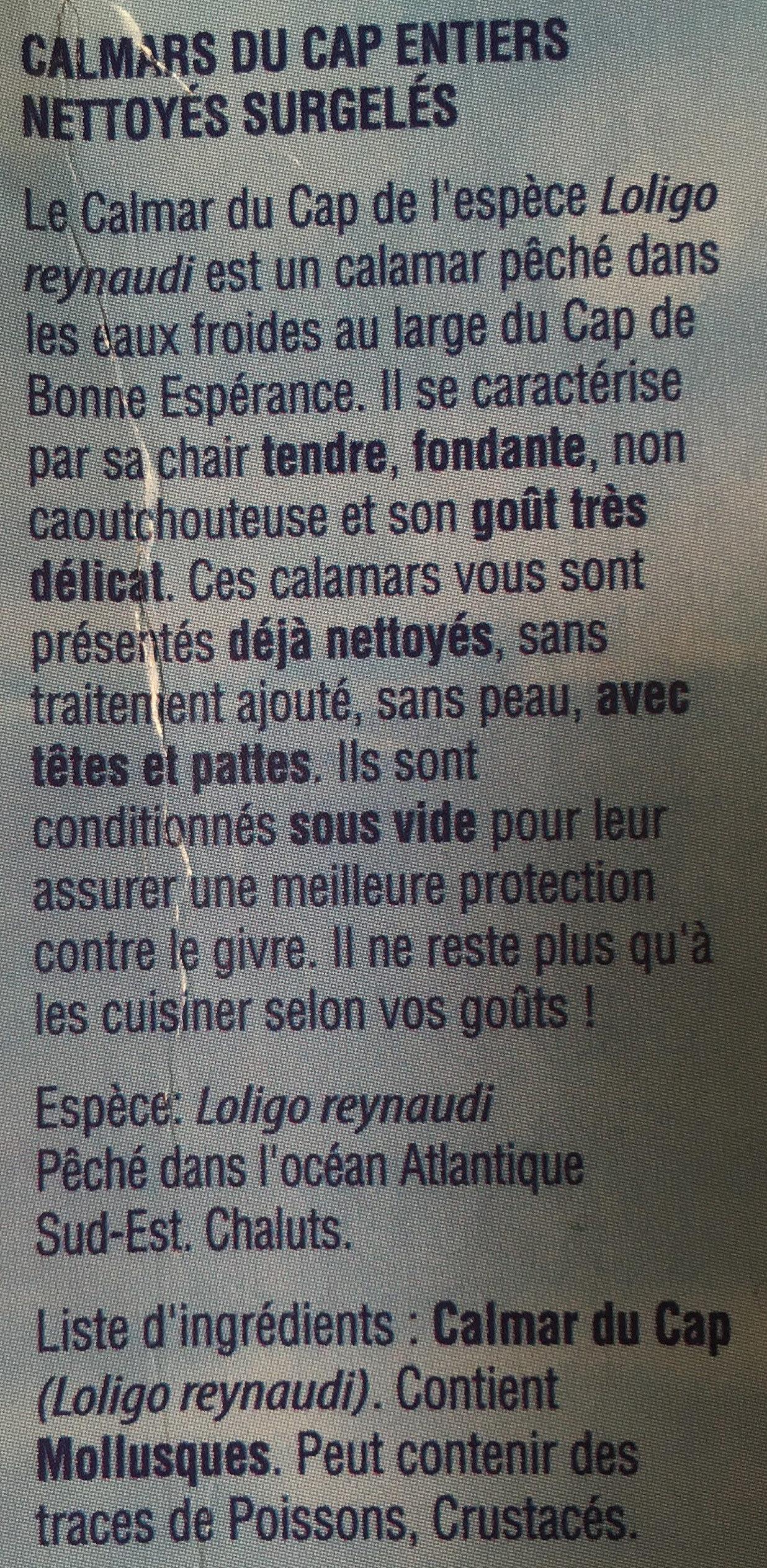 Calmars du Cap nettoyés - Ingrédients - fr