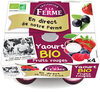 Yaourt bio fruits rouge - Product