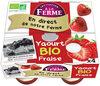 Yaourt Bio Fraise - Product