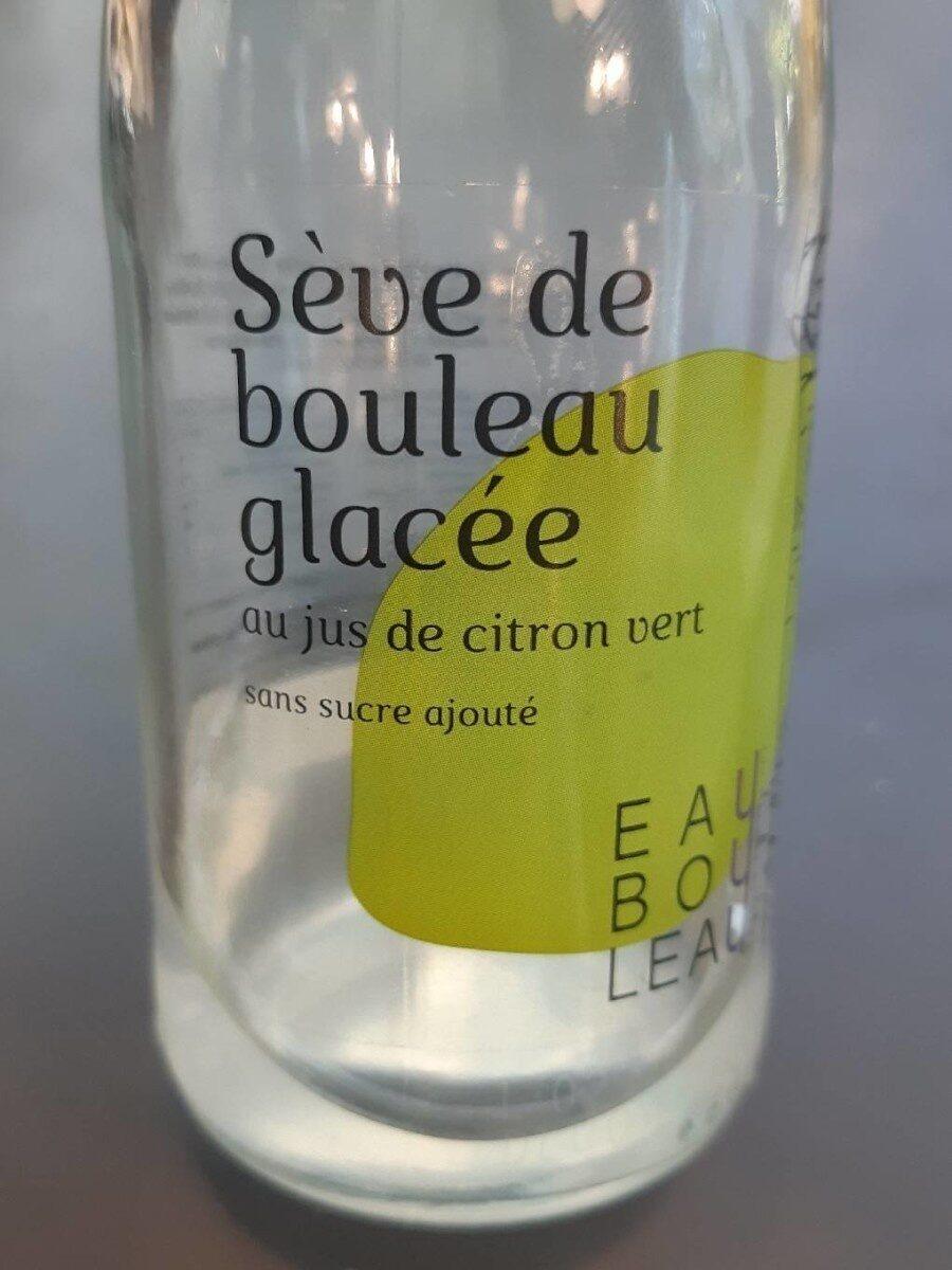 Sève de bouleau glacée citron vert - Product - fr
