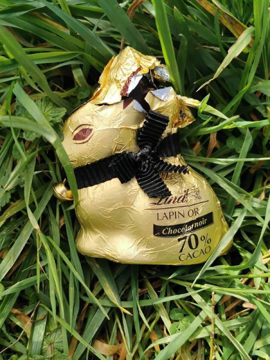 Lapin or chocolat noir 70 % cacao - Product - fr