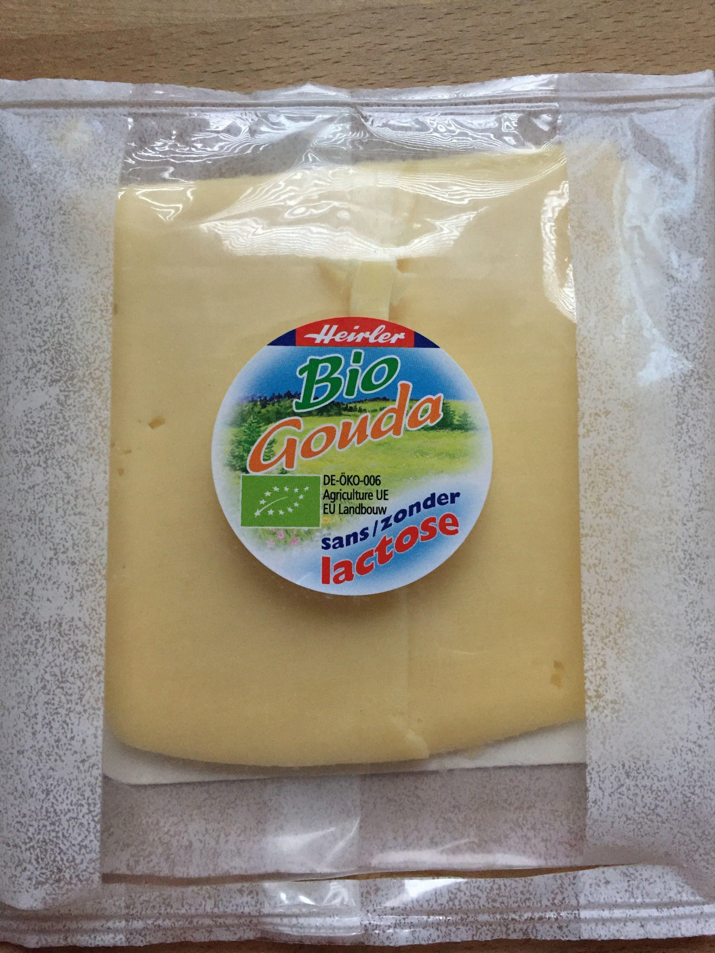 Gouda Sans Lactose - Product - fr