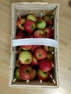 Elstar Äpfel - Produkt